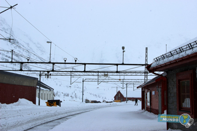 Norway in a Nutshell Estacao de trem de Myrdal